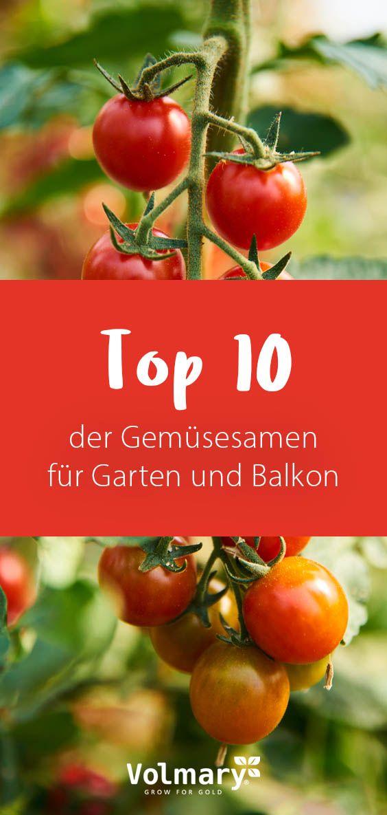 Top 10 Der Gemusesamen In 2020 Tomaten Anbauen Tomaten Pflanzen Tomaten Garten