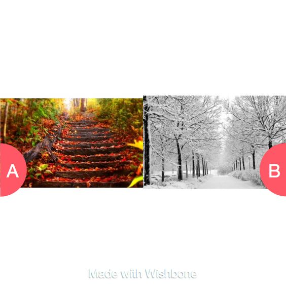 Fall or winter? Click here to vote @ http://getwishboneapp.com/share/17999091