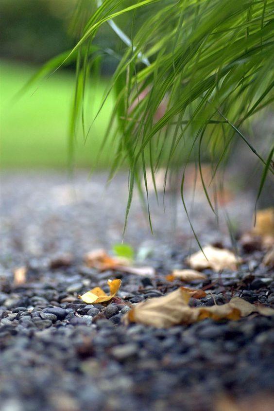 Dernières traces d'automne