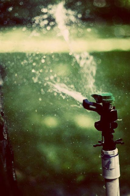 Summer Time Sprinkler