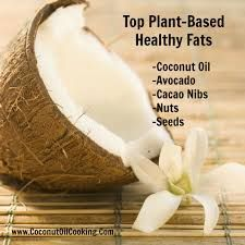 healthy fat images - Google Search