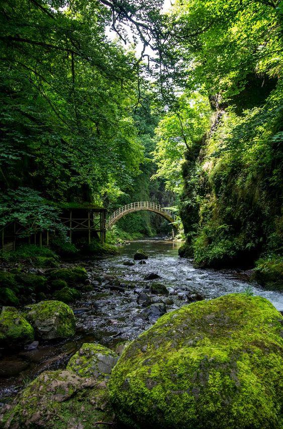 Gorges de la Jordanne, Auvergne / France (by fancharmor).