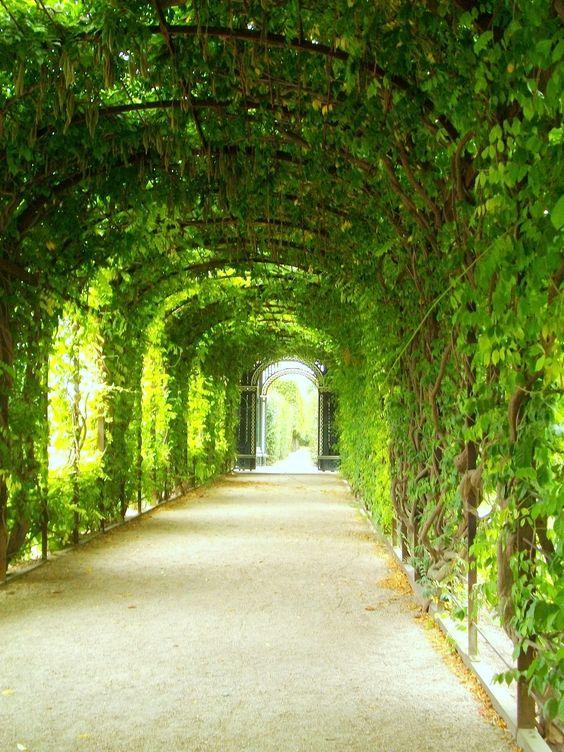 Schonnbrun castle,Vienna