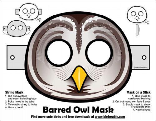 Handy image inside owl template printable martha stewart