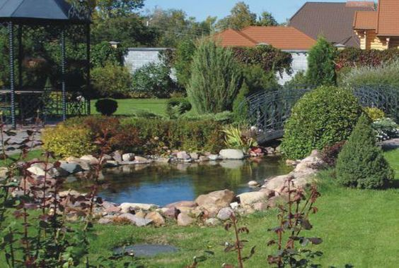 Feng Shui Backyard Pool : pond with turtles and koi fish, feng shui home and backyard ideas