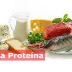 dieta-da-proteína