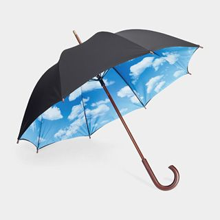 It's my beloved umbrella!  I had to abandon it in France because it wouldn't fit in my (already overweight) luggage...