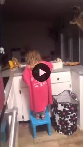 A mãe desconfia que está sumindo coisas na cozinha, olha quem foi pega no flagra.