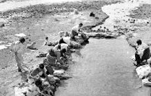 1948 Mujeres lavando ropa en un río de San Pedro de los Baños, retrato