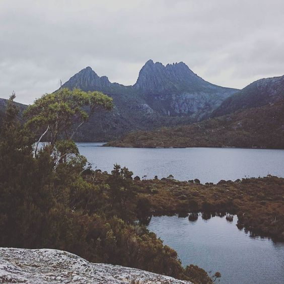 Take me back to Tasmania