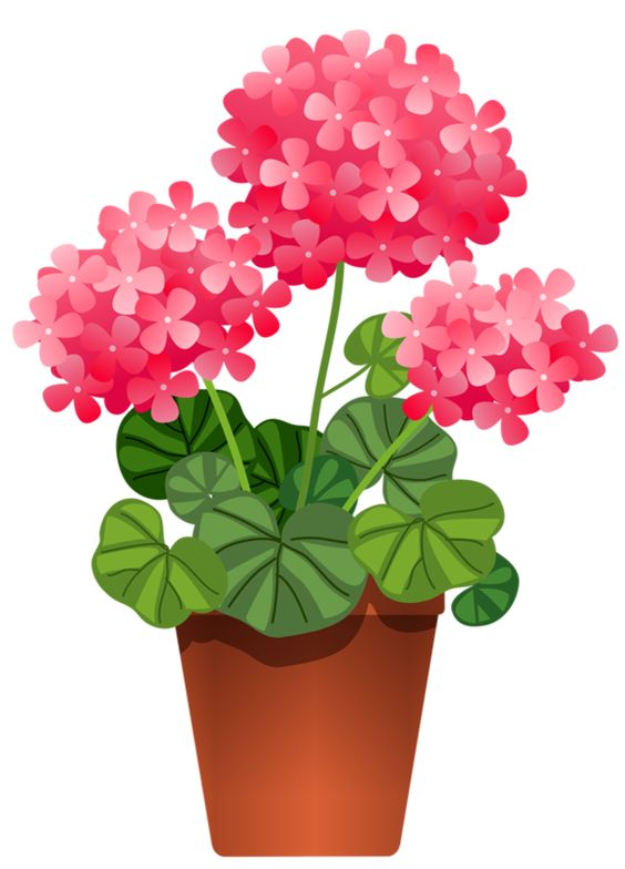 clipart flower in pot - photo #48