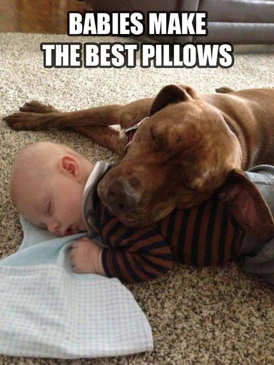 the best pillows