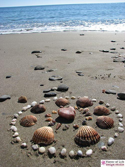 seashell Mandala