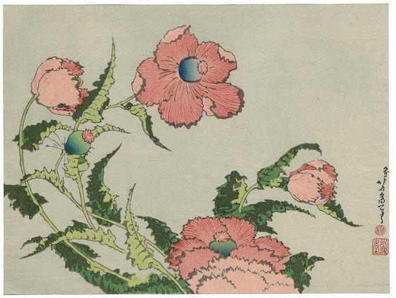 "Japanese Ukiyoe Woodblock print Katsushika Hokusai ""A poppy"""
