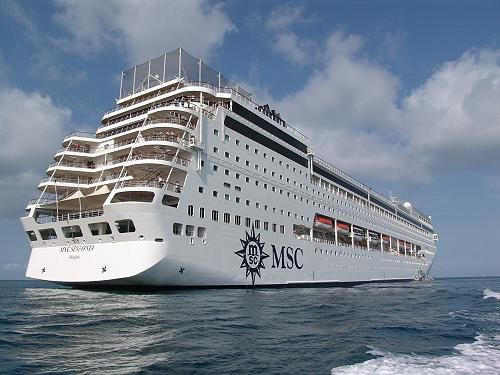 Wild Cards, MSC Cruises - Sinfonia from Durban and Cape Town