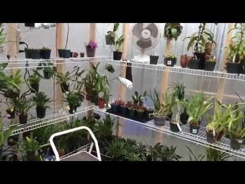 DIY Big Cheap Glass Greenhouse. Grande serre en récup. Gran invernadero de materiales recuperados - YouTube