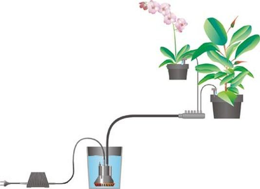 Arrosoir Plantes D Interieur Ecosia