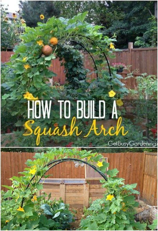 20 Easy Diy Trellis Ideas To Add Charm And Functionality To Your Garden Vegetable Garden Trellis Vegetable Garden Planning Vegetable Trellis