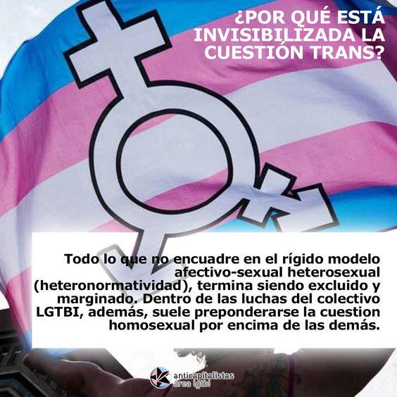 Todas estamos fuera de sus normas, todas somos trans