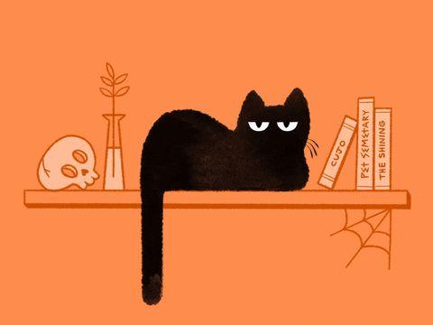 Cat Cat Animation Cute Halloween Creepy Tired Spooky Skull Sleepy 2d Animation Black Cat Procreate Frame By Frame Cel Black Cat Art Cat Art Cats Illustration