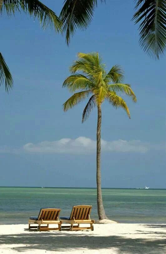 Islamorada florida keys december island pinterest for Tropical vacations in december