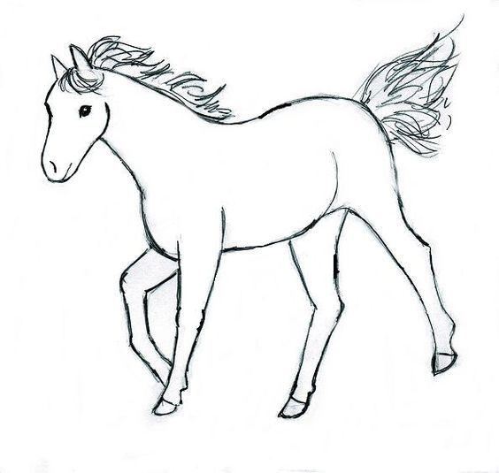 Horse Drawing Step By Kids Pinterest Pour