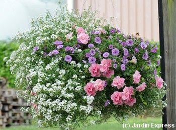 5 compositions pour une jardini re fleurie l t prochain - Suspension florale exterieure ...