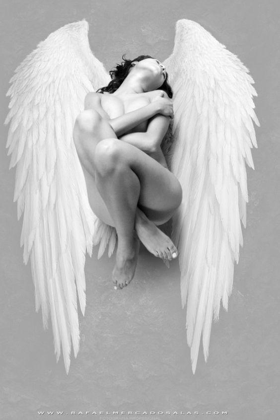 ♥ ángel