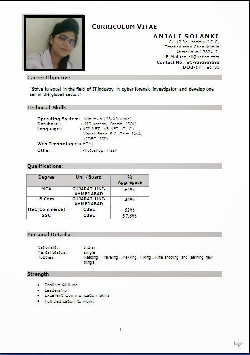 cv format word file Sample Template ofBeautiful Curriculum Vitae - resume format for mca