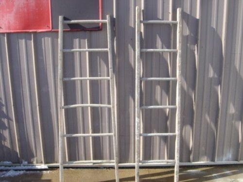 rung ladder