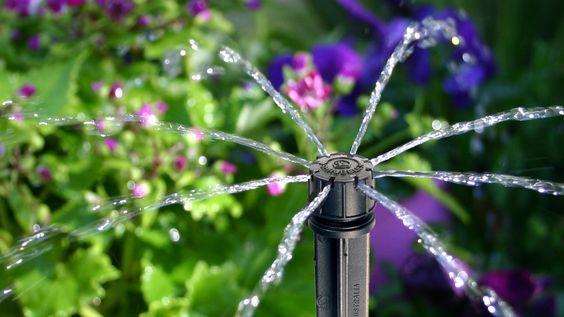 La micro-irrigation consiste en un apport d'eau lent à proximité des racines des végétaux.