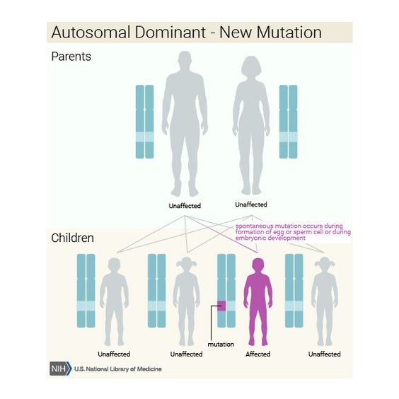 Autosomal dominant new mutation | What are the different ways in which a genetic condition can be inherited? - Genetics Home Reference: