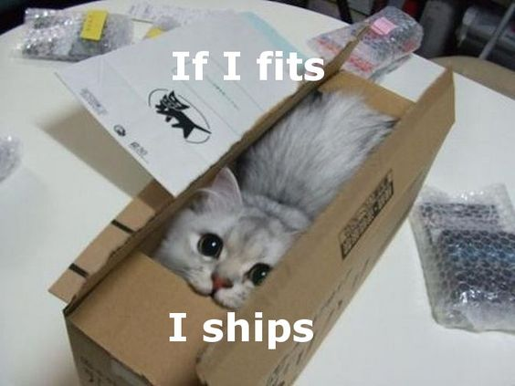 """another """"if I fits"""" series"""