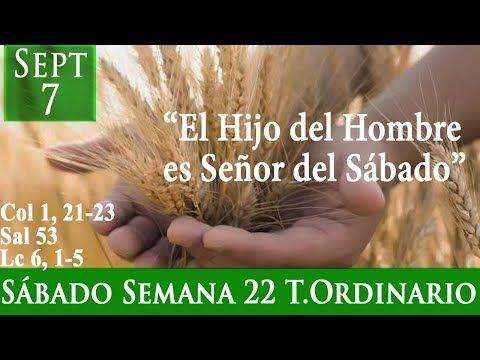 Evangelio Sábado 7 De Septiembre De 2019 Lucas 6 1 5 Salmo 53 Col 1 21 23 Youtube Salmo 53 Evangelio Segun San Lucas Evangelio