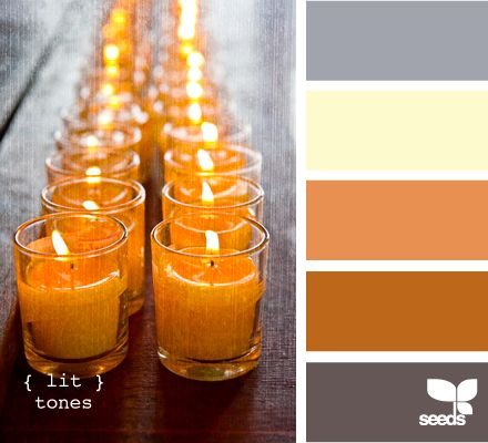 Best Color Wander Orange Grey Burnt Orange And Orange 640 x 480