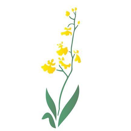 Estêncil para Pintura Simples 10x30 Chuva de Ouro - OPA1718 - PalacioDaArte