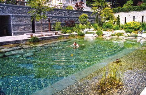 Der dienstälteste Schwimmteichbauer der Welt beschreibt fünf Kategorien von Schwimmteichen.: