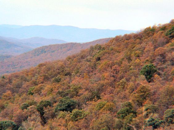 Can't wait for Oct & our Wintergreen trip <3