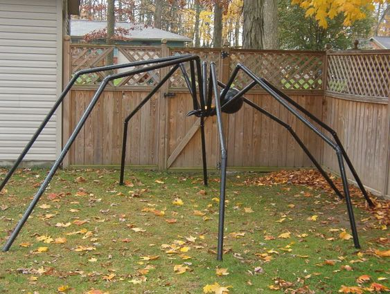 diy giant spider by sssgarry halloweenforum made with pvc piping fastened to a board with u. Black Bedroom Furniture Sets. Home Design Ideas