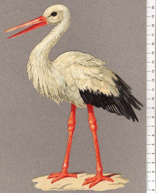 En-stor-stork | par Cilla in Sweden