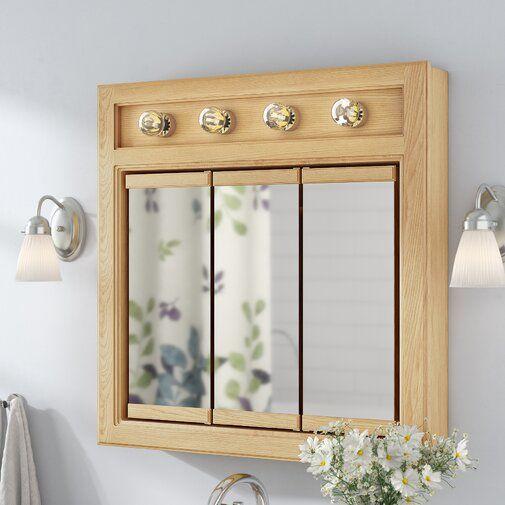 Searle Surface Mount Framed 3 Door Medicine Cabinet With 2