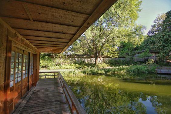 Japanese Garden, Fort Worth Tx.