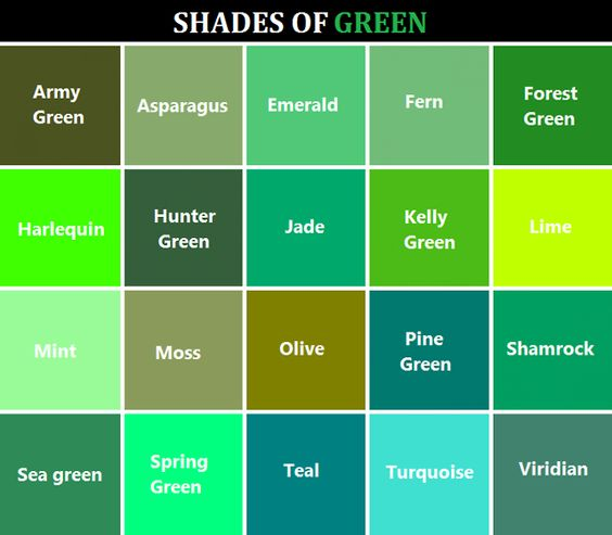 Shades of green for Show me the color green