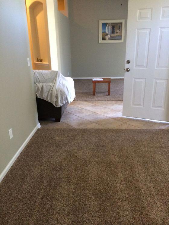 Carpet Runners For Stairs Amazon Redcarpetrunnersforrent Brown Carpet Bedroom Brown Carpet Living Room Brown Carpet