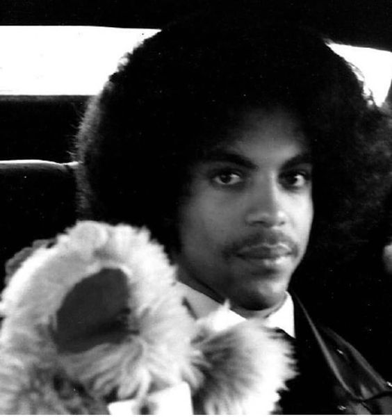 Prince Rogers Nelson | Prince rogers nelson, Young prince, Roger ...