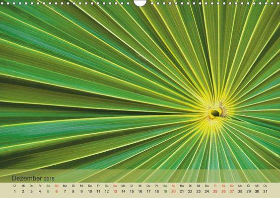 Emotionen in Grün - CALVENDO Kalender - www.calvendo.de/galerie/emotionen-in-gruen/ - #gruen #green #makrofotografie
