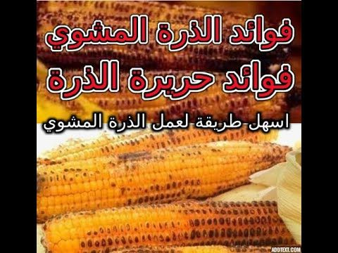 الذرة المشوي اسهل طريقة عمل الذرة المشوي بالبيت وفوائد الذرة المشوي للتخ Corn Vegetables