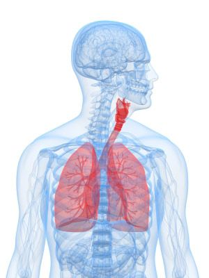 PROactive COPD - Chronic Obstructive Pulmonary Disease Support » Useful-Links