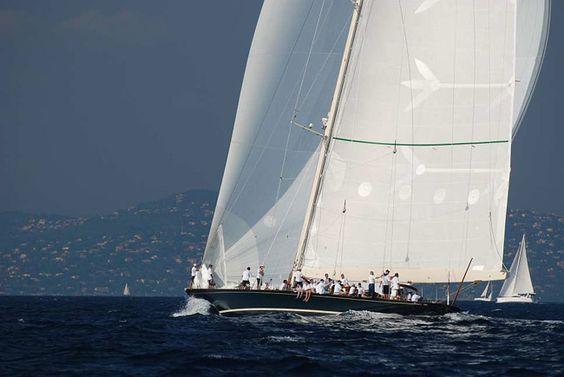 Shamrock V. lots of sail power!!!