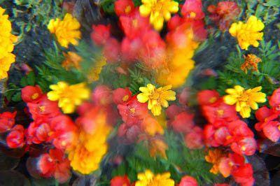Espiritualidad Contemporánea: Envejecer juntos el anhelo